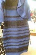 白金or黑蓝傻傻分不清楚 酷派铂顿双摄像头高清成像