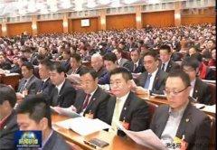 萧泓列席全国政协十二届三次会议第二次全体会议
