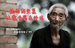 金恪常青藤:地球躁动,守候老人最后一块净土