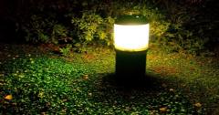 雷鸥的反击:商业照明市场的现在和未来的超时空思考